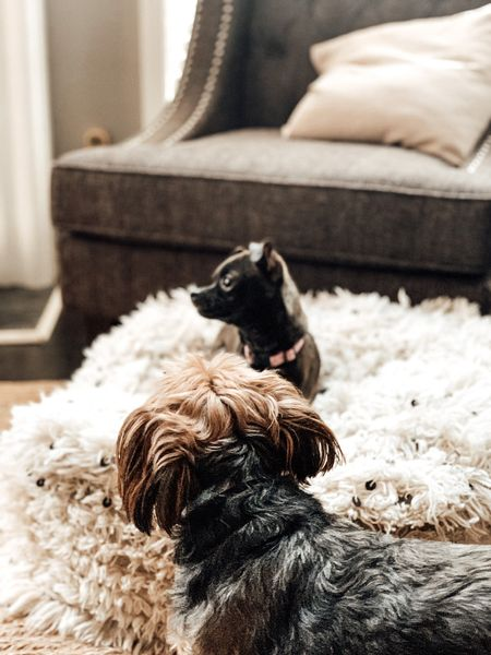 Neutral living room. Small spaces decor. Grey Club Chair from Wayfair. Moroccan Floor Pouf from Amazon Finds. Braided Jute Rug from Pottery Barn.  Shop this photo below. Follow @lindseyandcoco on @liketoknow.it for more deals and sales.  So glad you are here!💗   http://liketk.it/3jaa7 #liketkit #LTKhome #LTKstyletip @liketoknow.it.home
