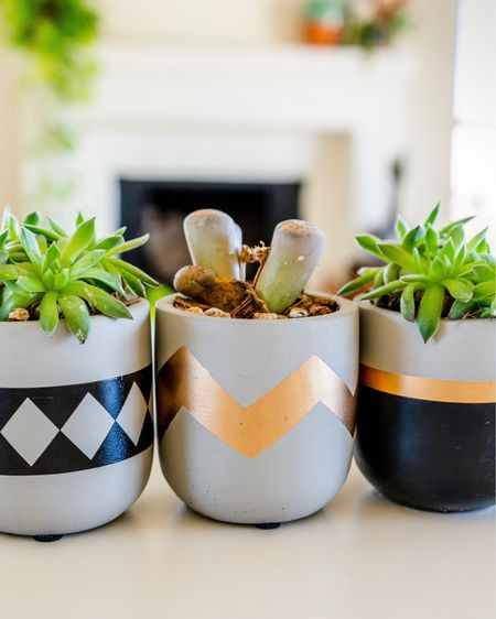 """Small succulents do great in small pots because they don't have large root systems. I love these small pots for succulents. Fun houseplant pots like these can add so much style and flair to your home, and make your succulents look extra cute! 2-3"""" succulents do really well in small pots, so try some of these out. Succulent pots, succulent home decor, small succulent, Amazon finds, found it on Amazon, houseplant must haves, houseplant pots, small houseplant pot  #LTKhome #LTKunder50"""
