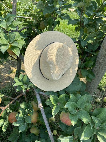 Best Women's Fall wide brim Fedora hat! #LTKfall  #LTKstyletip #LTKunder50