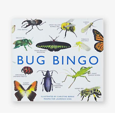 My family loves this game, simple but fun and you'll learn names of all sorts of bugs as a bonus ☺️  #LTKeurope #LTKGiftGuide #LTKkids