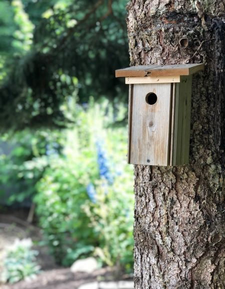 Natural wooden birdhouse 🥰 we must made ours with instructions from the Audubon bird book 📕 and chickadees moved in within a few weeks. They love to eat black oil sunflower seeds 🌻   #LTKhome #LTKSeasonal