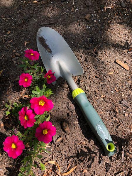 Love my Amazon Basics gardening tools #amazon #amazonbasics #gardening   #LTKhome #LTKSeasonal