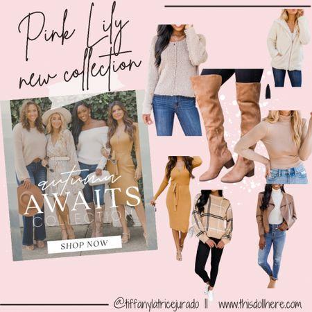 Fall fashion, boots, sweaters, dresses, jackets,  #LTKstyletip #LTKSeasonal #LTKworkwear