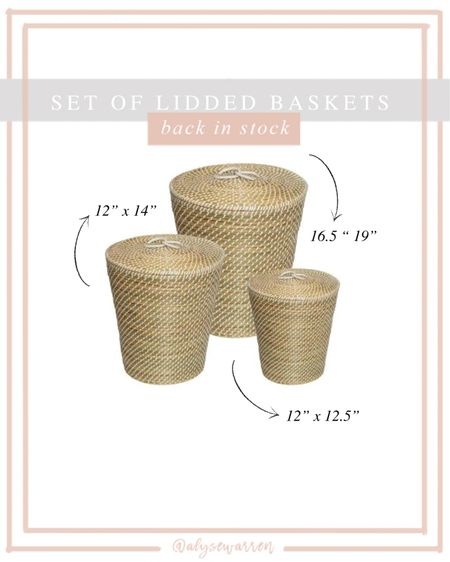 All 3 for $89!! These will sell out, so run!   Seagrass lidded baskets, nursery, playroom, kids bedroom, toy storage  #LTKbaby #LTKkids #LTKhome