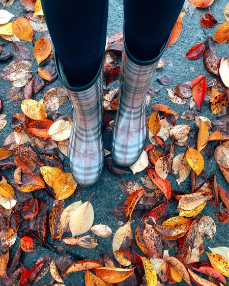 Burberry rain boots are so perfect for fall and winter. I've had mine for many years, and they've held up so well. Similar options linked in the @liketoknow.it app! 👢 http://liketk.it/30zYS #liketkit #LTKshoecrush #Burberry #FallFashion #RainBoots #Wellies #FallStyle