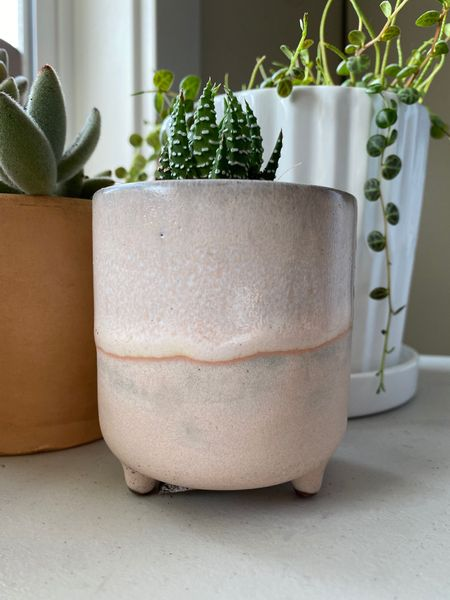 """This darling 3"""" blush footed planter is currently on sale for under $3! Perfect home your little succulents and house plant cuttings!   #LTKunder50 #LTKhome #LTKsalealert"""