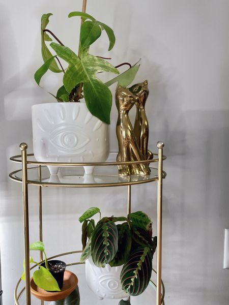I'm waving goodbye to bad juju thanks to these new evil eye cache pot planters from Flora Bunda 👋🏼   [ modern mystic home decor decorating with plants green thumb  ]  #LTKunder50 #LTKhome