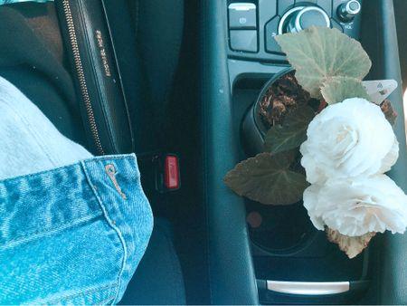Botanical pick me up featuring my Michael Kors wallet!    #LTKitbag #LTKstyletip