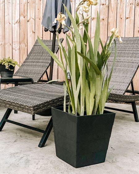Black outdoor planters that makes your patio look beautiful! http://liketk.it/3djQ5 #liketkit @liketoknow.it