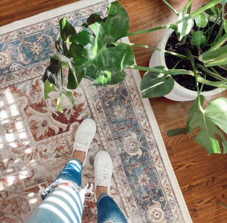 Sunshine, vintage inspired rugs & plants 🤍   #LTKhome #LTKSeasonal #LTKstyletip