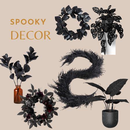 Halloween decor, Halloween plants   #LTKhome #LTKSeasonal #LTKunder50