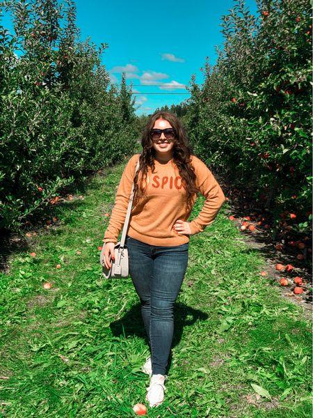 Fall fashion, pumpkin spice, apple picking, sweater weather  #LTKSeasonal #LTKunder50 #LTKsalealert