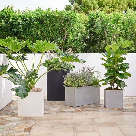 Patio furniture isn't complete without outdoor planters - West Elm has gorgeous ones 😍 🌿 #patio 📷 #westelm   #LTKSeasonal #LTKhome