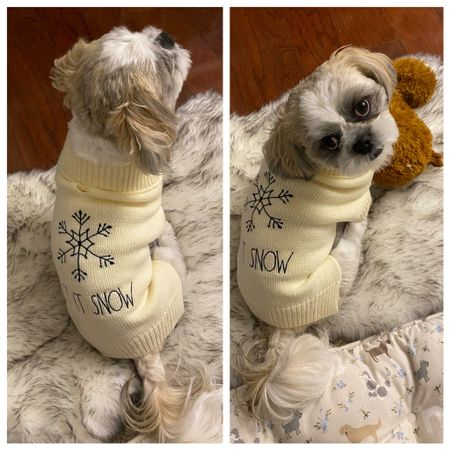Rae Dunn dog sweater. Very wasy to put on. Ralphie is a 15 pound male Shih Tzu and he is wearing size small.   #LTKstyletip #LTKgiftspo #LTKfamily
