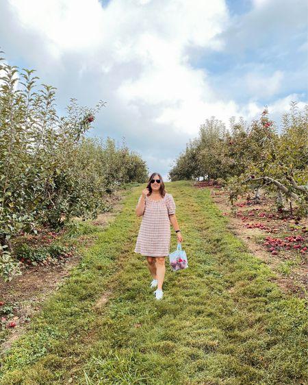 This autumn plaid swing dress was perfect for apple picking! #ltkfall   #LTKSeasonal #LTKunder50 #LTKcurves