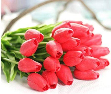 It's tulip season! A collection of my fav tulips   #LTKSeasonal #LTKunder50 #LTKVDay