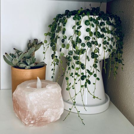 This tall white planter pot is 20% off right now making it $20n It comes in five colors and perfect for house plants like this string of turtles!   #LTKunder50 #LTKsalealert #LTKhome