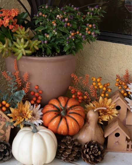 I'm so happy with how my front porch fall decorations turned out this year. I love using birdhouses for every season, they're so versatile especially if you paint them according to the season! No fall front porch is finished without faux pumpkins, pine cones, a hay bale, and fall flowers! Fall front porch decor, fall decorations, fake pumpkins   #LTKHoliday #LTKSeasonal #LTKhome
