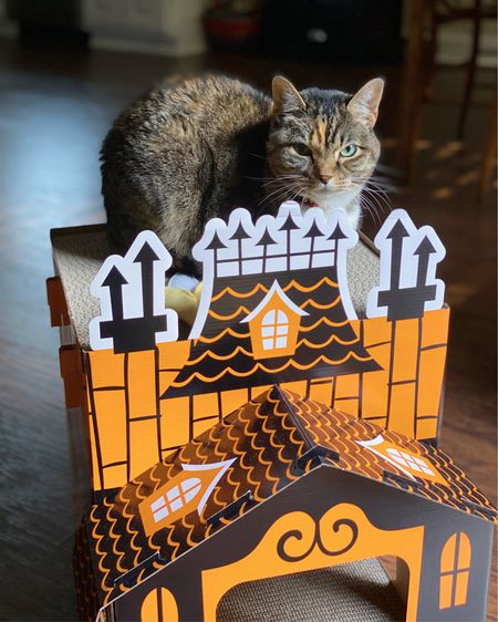 For all my fellow #halloween-loving cat ladies, I just found out this year's Halloween Cat Scratcher's have been released and they are SO cute! (Zoe's is from last Halloween, and still in great shape.) 🎃👻🔮 http://liketk.it/2V3tw #liketkit @liketoknow.it #StayHomeWithLTK #LTKunder50 #LTKhome #catscratcher #ltkfall #halloween #hauntedhouse #catlady