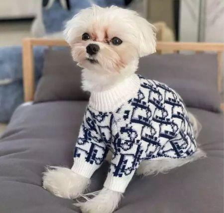 Dog designer dupes   #LTKunder100 #LTKfamily #LTKunder50