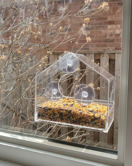 Coolest bird feeder ever. http://liketk.it/3c01G @liketoknow.it #liketkit