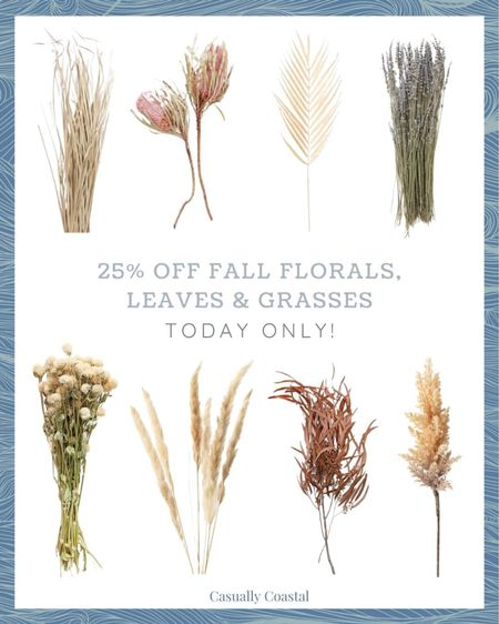 Afloral is running a 25% off sale today only on all fall flowers, grasses, leaves and stems. I've always been very pleased with the quality of everything that I've ever ordered from Afloral, and I have the beige palms shown in the top row. I love one or two mixed into a vase of other grass stems and grasses! - home decor, decor under 50, home decor under $50, fall decor, fall decorations, fall home decorations, coastal decor, beach house decor, beach decor, beach style, coastal home, coastal home decor, coastal decorating, coastal interiors, coastal house decor, home accessories decor, coastal accessories, beach style, neutral home decor, neutral home, natural home decor, fall flowers, faux fall flowers, dried flowers, fall stems, fall grasses, vase decor, palm leaves, pampas grass, dried lavender  #LTKsalealert #LTKunder50 #LTKhome