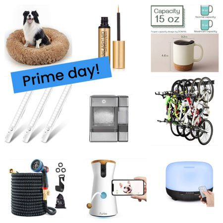 It's Amazon Prime day! Pet, home, my amazing finds! Nugget ice machine $100 off! http://liketk.it/3i2X1 @liketoknow.it @liketoknow.it.home #liketkit #LTKunder100 #LTKhome #LTKsalealert