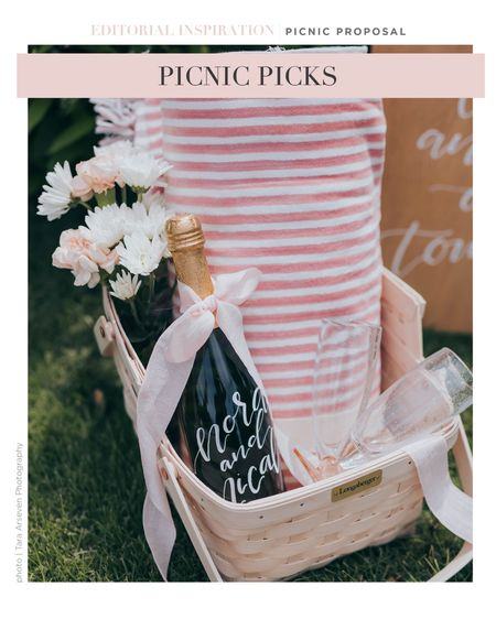 All you need for a simple picnic! Just add food! 🥂  #LTKitbag #LTKwedding #LTKunder100