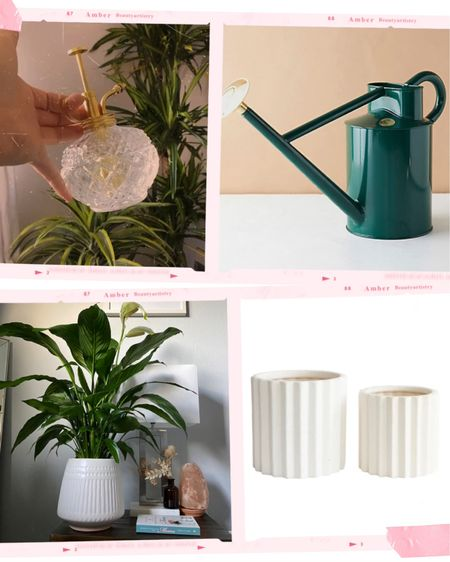 For the love of plants💚 I love these products for giving my indoor babies the love and nurturing they deserve.   @liketoknow.it #liketkit http://liketk.it/38h8p #LTKhome #LTKVDay