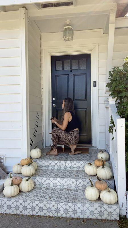 Neutral fall/Halloween porch decor  I remove the bats after Halloween   #LTKhome