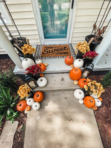 Fall front porch home decor coffee table dining room decorations styled styling style velvet pumpkins neutral greenery stems natural modern minimal   #LTKhome #LTKSeasonal #LTKHoliday