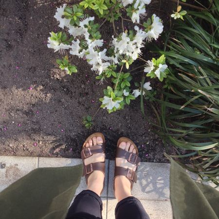 If you suffer from plantar fasciitis these legendary sandal made with a contoured, supportive footbed that mimics the shape of your foot.  @birkenstock    http://liketk.it/3gNI7 #liketkit @liketoknow.it Shop your screenshot of this pic with the LIKEtoKNOW.it shopping app @liketoknow.it.family @liketoknow.it.home @liketoknow.it.brasil @liketoknow.it.europe #LTKsalealert #LTKshoecrush #LTKstyletip