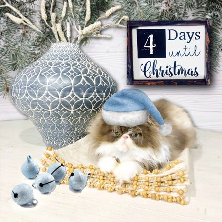 Four days...let that sink in 🤦🏼♀️ —> Winston is feeling the holiday spirit! Can't you tell?!? <— What do you still need to do before Santa makes his way here?!?  *~*~*~*~*~*~*~*~*~*~*~  Shop my daily looks by following me on the LIKEtoKNOW.it app   http://liketk.it/2yWRy #liketkit @liketoknow.it   #LTKholidaystyle #LTKholidayathome #LTKholidaywishlist #LTKholidaygiftguide #LTKunder50 #LTKunder100 #LTKfamily