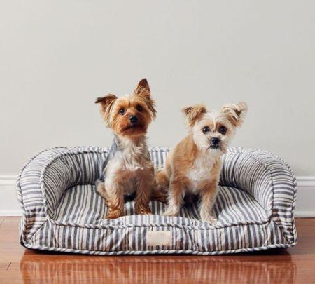 Best stylish pet dog beds that look good in the home.  Home decor. Dog. Pet. Wool. Plaid. Tweed. Grain sack. Pillow. Bolster. Designer dog bed. Modern. Chambray. Chinoiserie. Stripe. #LTKpet   http://liketk.it/3nO6k @liketoknow.it #liketkit #LTKbacktoschool #LTKSeasonal #LTKhome #LTKsalealert #LTKunder100 #LTKstyletip #LTKfamily @liketoknow.it.home @liketoknow.it.family