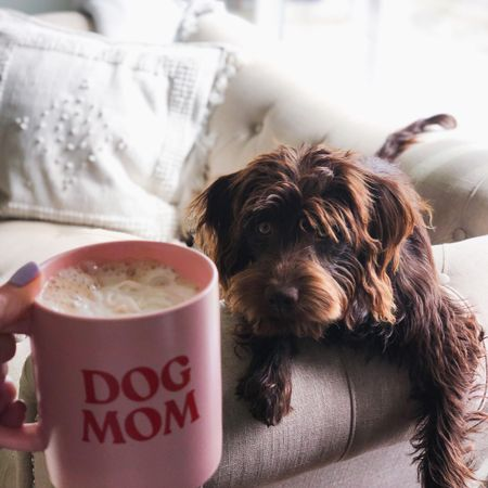 Sharing the best coffee IMO and some cute dog mom/ dog dad mugs. Father's Day gift idea http://liketk.it/3h6UY #liketkit @liketoknow.it #LTKfamily #LTKmens #LTKunder50 Shop my daily looks by following me on the LIKEtoKNOW.it shopping app
