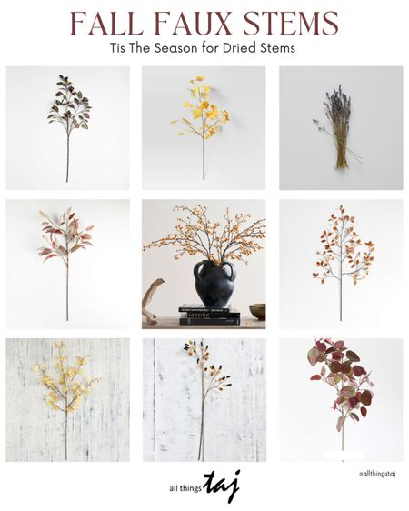 So many lovely faux fall stems to choose from for the upcoming Fall season and I'm sharing my top picks from Target, Crate & Barrel and more, XO  #LTKfamily #LTKSeasonal #LTKhome