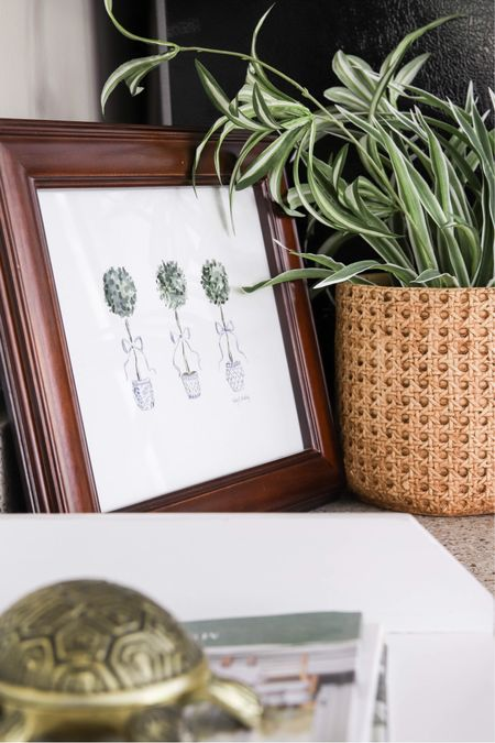 Plants make a room come alive! So whether you have real or faux plants, this ceramic cane planter is the way to go! I love the beautiful texture and color it brings to my home! 😍   Planter, faux plant, real plant, cane, home decor, desk decor, Amazon finds, Amazon home decor, boxwood topiaries, traditional decor, framed watercolor art, brass decor    #LTKunder50 #LTKhome