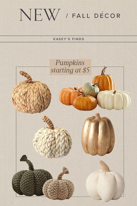 F A L L \ gimme all the pumpkins!🍂  #pumpkins #fall #falldecor #target #targetfind  #LTKhome #LTKunder50 #LTKSeasonal