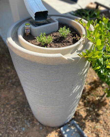 Garden. Garden essentials. Garden must haves. Rain barrel.  http://liketk.it/3dFND #liketkit @liketoknow.it #garden #gardenessentials #outdoor