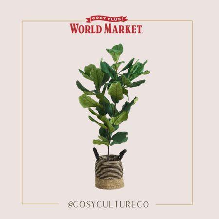 Five foot faux fiddle leaf fig tree!     #LTKhome #LTKstyletip #LTKSeasonal