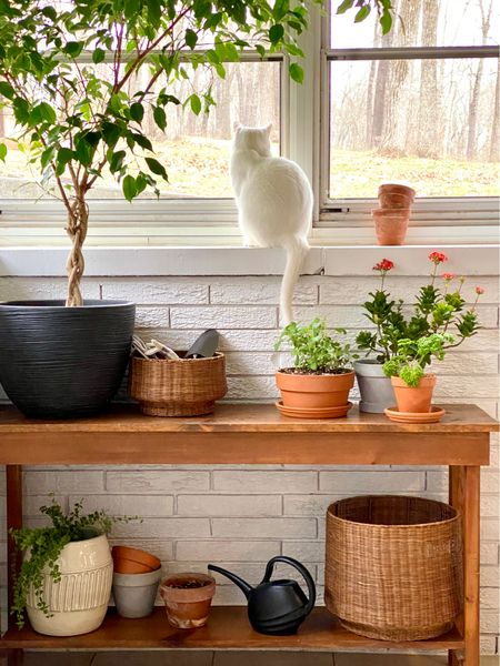 Ready for spring with my planter station.   #LTKunder50 #LTKSeasonal #LTKhome