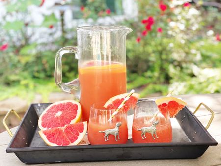 A southern style happy hour. Bourbon + grapefruit juice = 😋. Head to the blog for the recipe. But these fun Labrador glasses are long time favorites, and the tray is a bargain! 🥃   #LTKhome