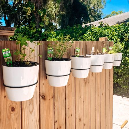 Herb garden on a fence! Great for a small space. Try it out http://liketk.it/3f8pp #liketkit @liketoknow.it #LTKhome @liketoknow.it.home