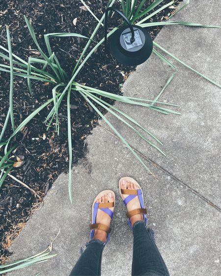 Everlane sandals I can't get enough of! @liketoknow.it http://liketk.it/3hPNl #liketkit #LTKshoecrush