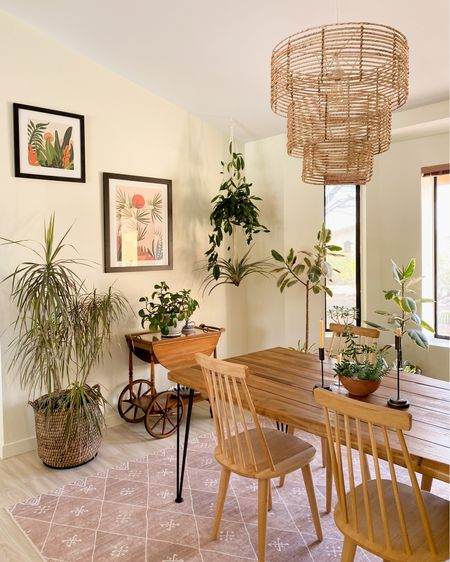 My dining room is FULL of plants. I live how my home decor and houseplants look together in this brightly lit room. I just ordered those prints from Society 6 and I think they tie the whole look together. Houseplant, mid century modern, bamboo chandelier, wooden chairs, dining room, floor baskets  #LTKhome #LTKstyletip