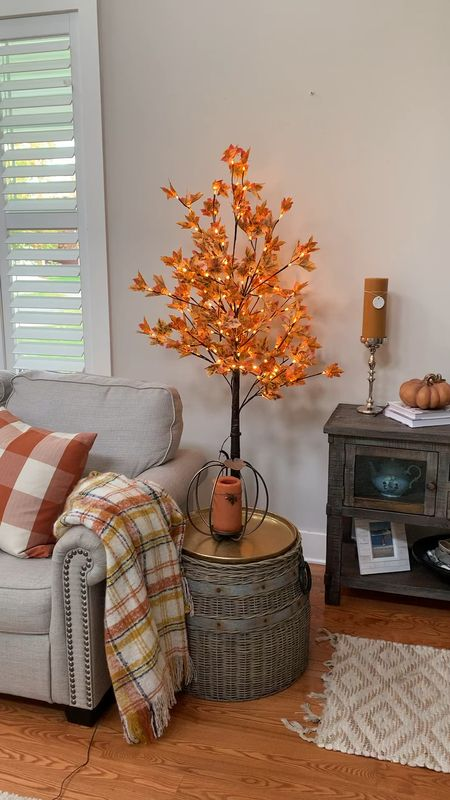 My fall maple pre-lit came today! Received in two days! ✨🍂   #LTKstyletip #LTKSeasonal #LTKhome