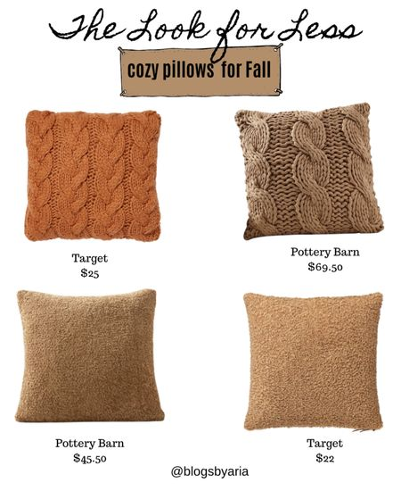 Get the look for less for these pottery barn pillows with these affordable options from Target.   Fall decor  Save or splurge  Target finds   #LTKSeasonal #LTKhome