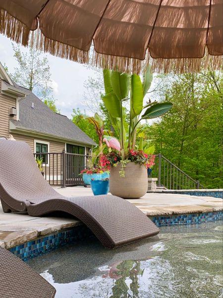 Poolside summer 🏝 http://liketk.it/3fJl3 #liketkit @liketoknow.it #LTKhome #LTKstyletip #LTKswim