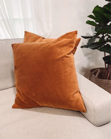Amazon pillows amazon home finds velvet pillow cases affordable home finds living room decor #LTKhome #LTKunder50 #liketkit #LTKunder100 http://liketk.it/3axCY @liketoknow.it