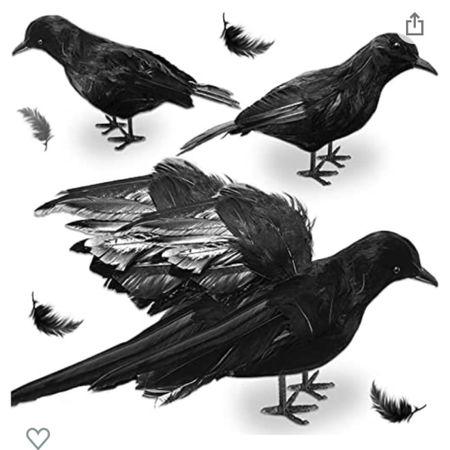 Halloween birds  #LTKHoliday #LTKSeasonal #LTKhome